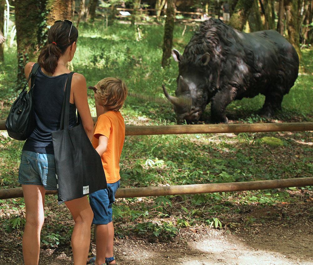 Le rhinoceros laineux